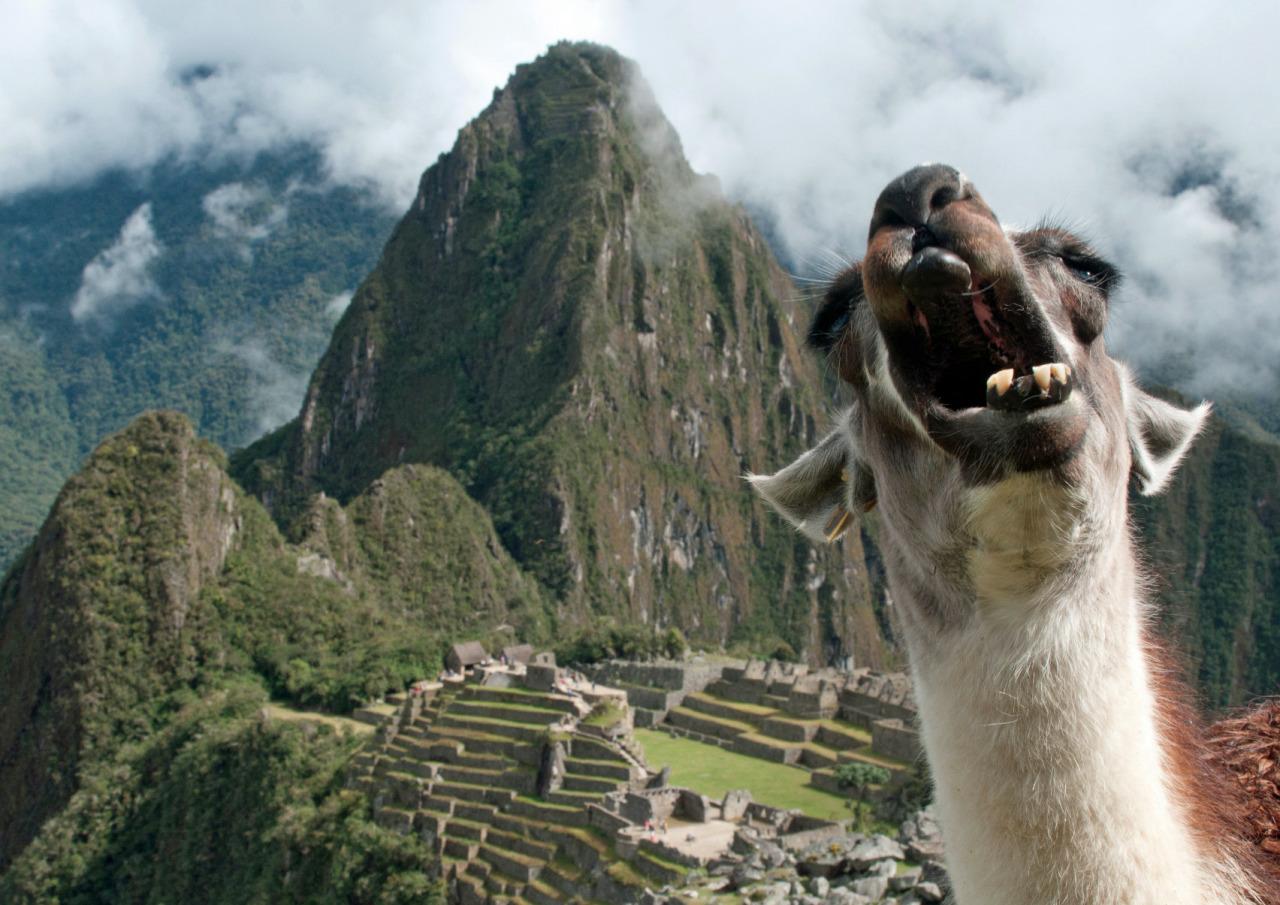 Мачу-Пикчу: затерянный город Инков (часть 2)