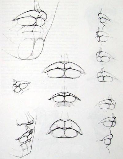 Как нарисовать губы поэтапно: инструкция для начинающих