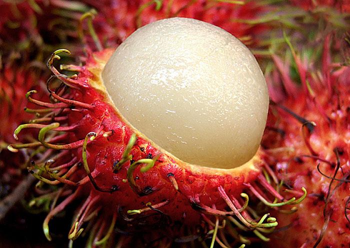 Волосатые тропические фрукты - что это такое?