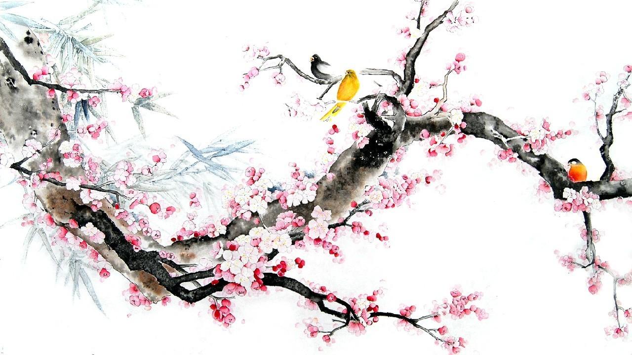 Как нарисовать сакуру поэтапно: красивое розовое дерево